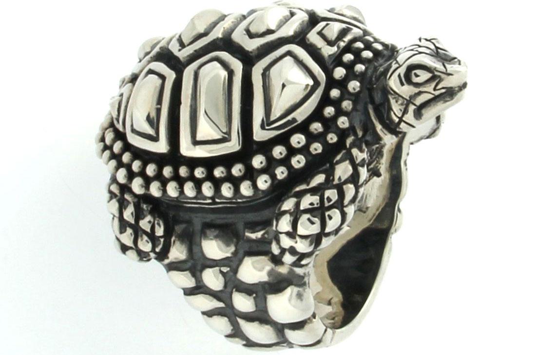 L'anello tartaruga