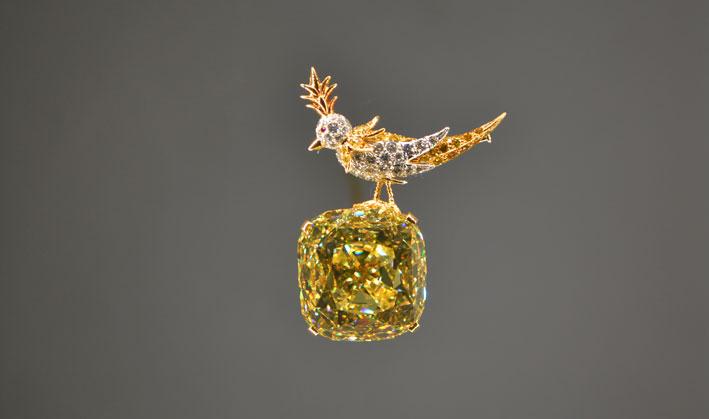 Il diamante è stato incastonato nel design della spilla Bird on a Rock di Jean Schlumberger per la retrospettiva del gioielliere al Museé des Art Décoratif nel 1995