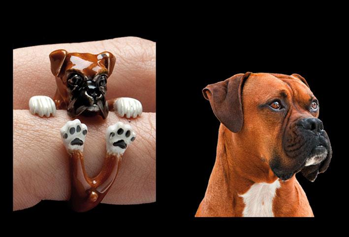 Anello cane Boxer