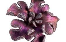 Giovanni Ferraris, spilla in titanio color mora scuro e diamanti a profilare i contorni