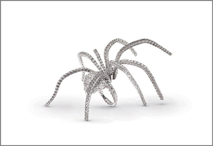 Damiani, anello ragno in oro bianco e diamanti bianchi