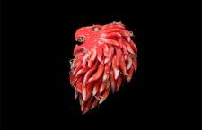 Ciondolo in corallo a forma di testa di leone
