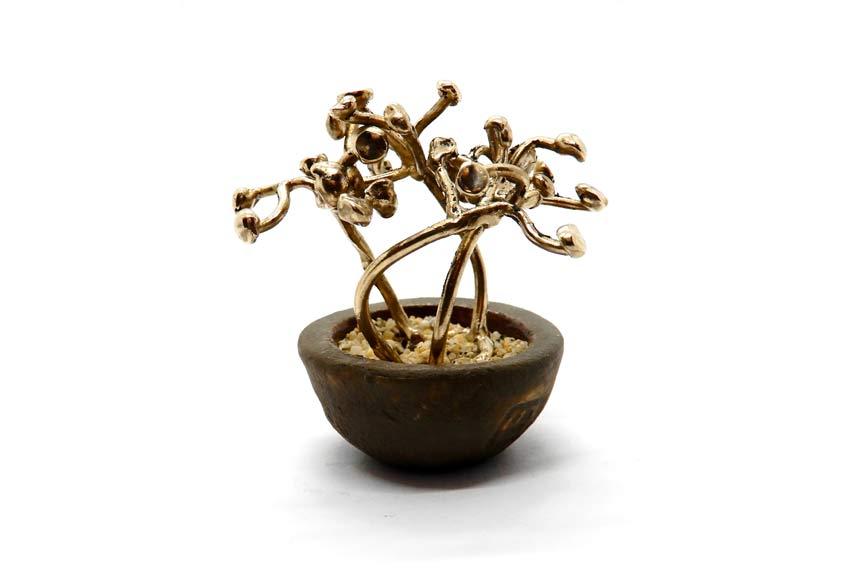 Eleonora Ghilardi, anello bonsai