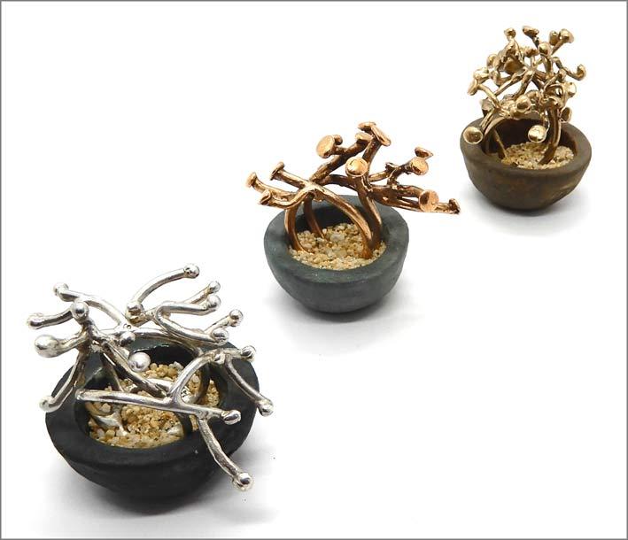 Anelli bonsai