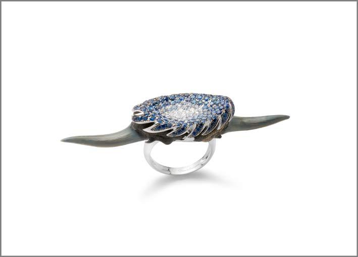 Anello in oro bianco 18 k, argento 925, zaffiri blu, brillanti. Denti fossili di Carcharias Taurus, nome comune squalo tigre della sabbia. Epoca Pliocene-Miocene, circa 5 milioni di anni fa. Ritrovamento presso Bone Valley Group, Venice, Florida. (Usa)