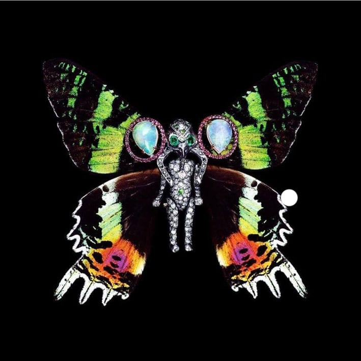 Specimen Elephantitus, con diamanti, smeraldo, opale, rubino