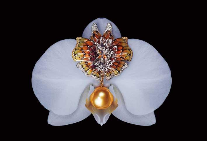 Spilla o pendente Rêve de Papillon. Con perla dorata South Sea, diamanti rose cut, zaffiri gialli, diamanti